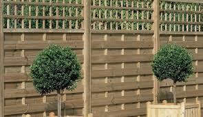 pergola garden trellis lowes eye catching lowe u0027s lci trellis