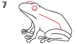 coloring impressive simple frog drawing coloring