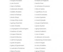 of collective nouns people