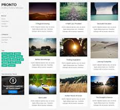 collection of high quality sofware wordpress themes pixelbell 50