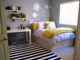 bedroom pleasing teenage bedroom color schemes pictures options
