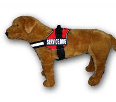 guide dog harness amazon com service dog harness vest comes with 2 reflective