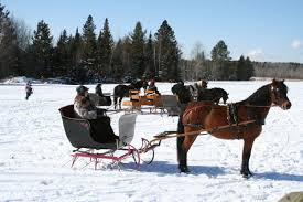 blackberry horse drawn sleigh rides photo by denean flower