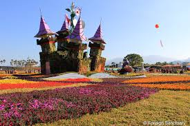all about flowers looking forward to the 2014 taichung flower
