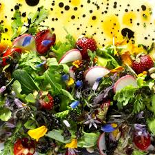 Salad With Edible Flowers - eat flowers be happy edible flower salad taste with the eyes