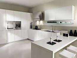 wondrous modern kitchen ideas with cool acrylic kitchen cabinet