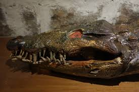 spanish thanksgiving prayer crocodile prayers u2014 all the saints you should know