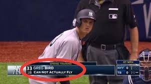 Baseball Memes - greg bird baseball know your meme