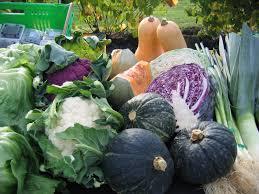 saturday farmer u0027s market auckland oratia farmer u0027s market