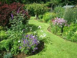 country cottage garden ideas decorating clear