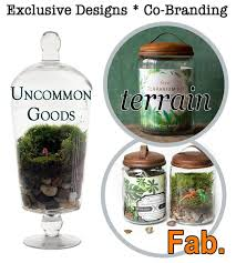 wholesale terrariums u0026 kits twig terrariums