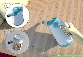 What Kills Bed Bugs For Good How To Kill Bed Bugs With Steam 9 Steps With Pictures Wikihow