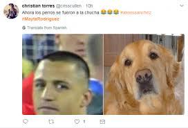 Alexis Meme - las mejores reacciones memes de alexis s磧nchez y mayte rodr祗guez