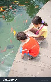 boy feeding ornamental koi stock photo 273199547