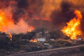 California Wildfire Animal Rescue by Blue Cut Fire Burning With Ferocity Never Seen By California Fire