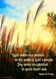 quotes about fall gardening plant joy seeds joy day and printable an extraordinary day