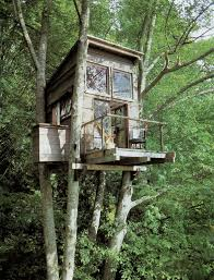 cool tree houses tree houses for your spouses u2013 hommemaker