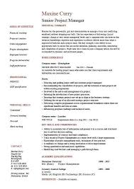 Best Project Manager Resume it program manager resume examples project manager resume example