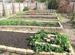 Garden Ideas Pictures Fall Front Yard Vegetable Garden Design Backyard Vegetable