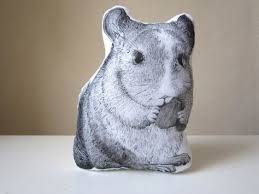 this is a chinchilla pillow an animal mini cushion with a lovely