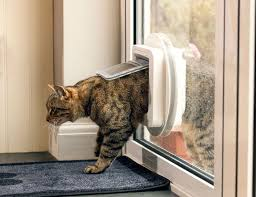 running into a glass door sureflap microchip cat flap amazon co uk pet supplies