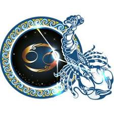 follow the zodiac signs to great liked on polyvore