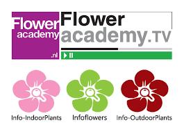 flower companies ons floweracademy nl