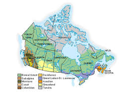 regions of canada map session 4 forest regions of canada