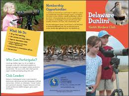 Delaware travel box images Delaware dunlins youth birders club png