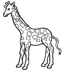 coloring picture of a giraffe giraffes coloring pages free
