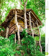 jungle bungalow in phi phi island royalty free stock photo image