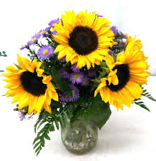 sunflower delivery same day delivery jar sunflowers v 1135 flowers