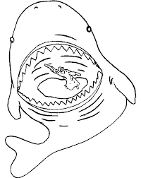 jonah whale stomach jonah whale coloring netart