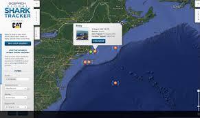 ocearch first great white shark business insider