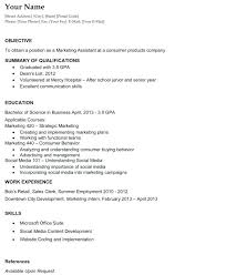 resume exles for career objective professional objectives for resume exles sle resume