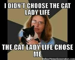 Hahahah Meme - hahahah humor pinterest cat cat lady and crazy cat lady