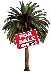 i want to sell my large palm tree