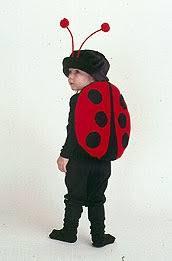 ladybug costume best 25 ladybug costume ideas on butterfly costume