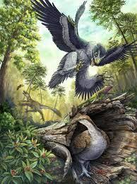 native plants of massachusetts how did bird ancestors survive the apocalypse audubon