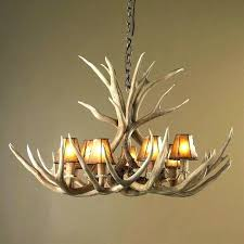 Antler Chandelier Canada How To Make A Deer Horn Chandelier How To Make A Deer Antler