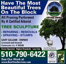 best tree service newark ca 94560 yp