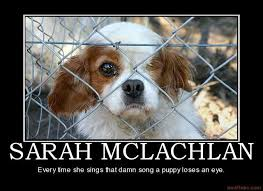 Aspca Meme - spc demotivational poster page