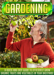 buy gardening a quick and easy guide to efficiently grow organic