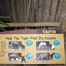 bartender resume template australia zoo expeditions maui to molokai singapore zoo photo galleries zoochat