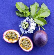 passion fruit naughty by nature pinterest