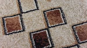 Clean Area Rugs Clean Area Rug With Baking Soda Home Design Ideas