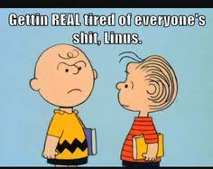 Charlie Brown Memes - pin by dcresident on funny yet realistic pinterest funny