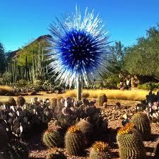Scottsdale Botanical Gardens Botanical Gardens Az Wonderful Scottsdale Arizona