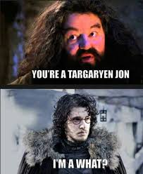 Jon Snow Memes - you know nothing of these jon snow memes 25 photos thechive