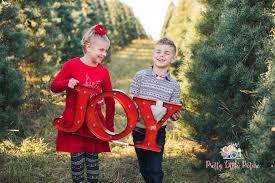 christmas tree farm photo session pretty little picture